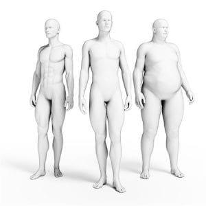 Antropometría y medición corporal